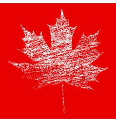 White Grunge Maple Leaf vector image vector image