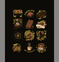 cocoa beans and chocolate woman and cup drink vector image