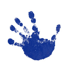 hand paint print isolated white background blue vector image