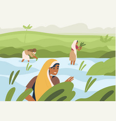 Indian farmers working on rice field standing vector