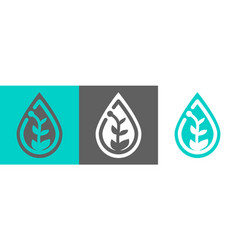 plant in waterdrop icon vector image