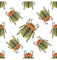 Seamless pattern with colorado potato beetle vector