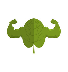 Strong spinach powerful herbs for muscle growth vector