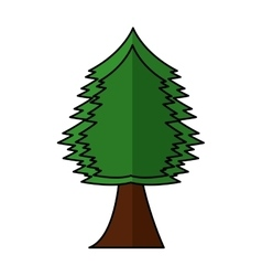 tree plant forest isolated icon vector image