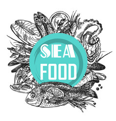 seafood sketch vector image