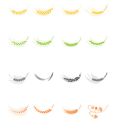 cereals icons of grain plants vector image vector image