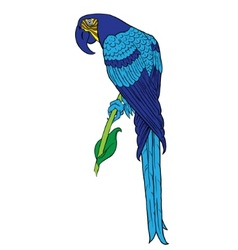 parrot silhouette vector image vector image