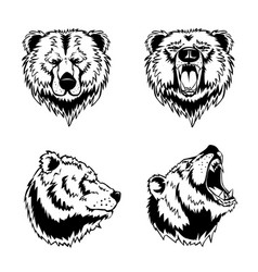 Bear head hand drawn engravings vector