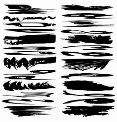 collection ink strokes brush lines vector image