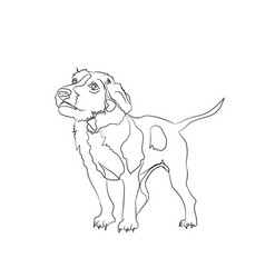 Dog stands lines vector