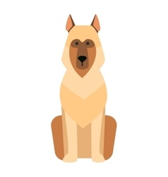 Flat dog pet sitting cute vector