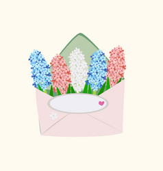 Hyacinths in an envelope on light background vector
