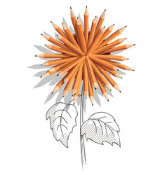 pencil glass with pencils in a shape of flower vector image