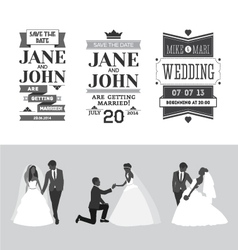 set wedding design elements vector image