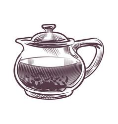 sketch tea kettle hand drawn transparent glass vector image