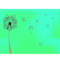 dandelion against green background vector image