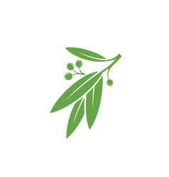 green branch vector image