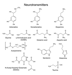 Basic neurotransmitters vector image vector image