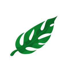 Green split tropical leaf vector