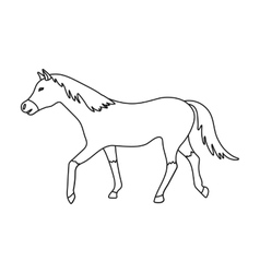 Horse icon in outline style isolated on white vector image