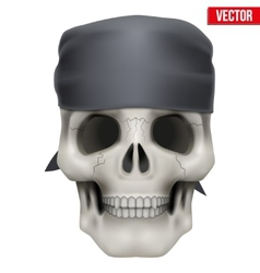Human skull with bandana on head vector