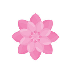 Pink flower garden decoration vector