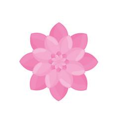 pink flower garden decoration vector image
