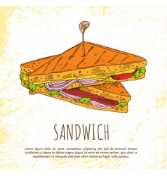 Sandwich with onion salad meat and tasty cheese vector