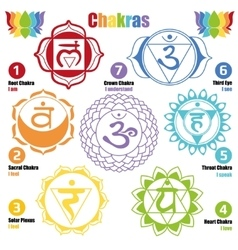 Seven chakras of the Human body and Our Health vector