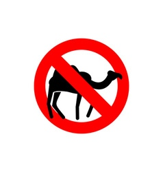 Stop camel Prohibited animal of desert Red vector image