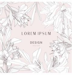 wedding background card floral decorative vector image