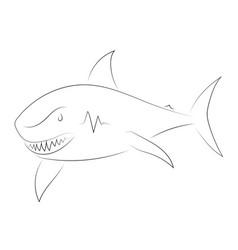 black line shark on white background shark sketch vector image