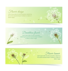 Collection of banners and ribbons with dandelion vector