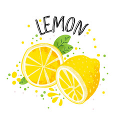 hand draw lemon half and vector image