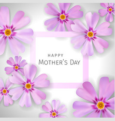 Mothers day greeting card with flowers phlox vector