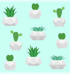 plants in pots seamless pattern cactuses vector image