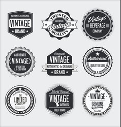 vintage labels and badges collection vector image vector image