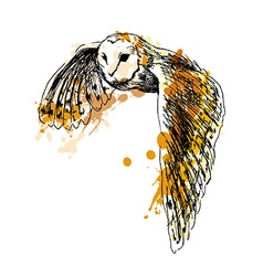 Colored hand sketch flying owl vector image vector image