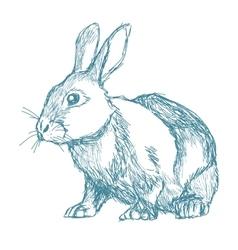 rabbit sketch blue vintage vector image