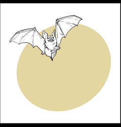 scary flying halloween vampire bat isolated vector image vector image