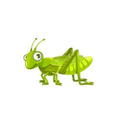 cartoon grasshopper locust insect icon vector image
