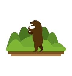 Isolated bear animal design vector