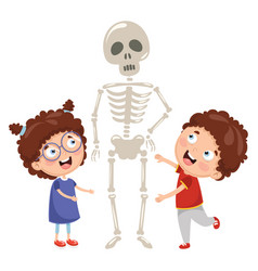 kids having biology lesson with human skeleton mod vector image