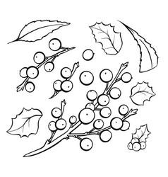 mistletoe coloring book set vector image