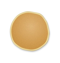 one plain pancakes vector image