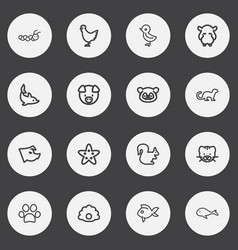 Set 16 editable zoology outline icons includes vector