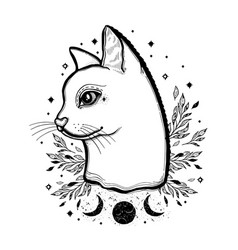Sketch graphic cat with mystic and occult hand vector