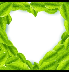 Fresh green leaves with heart shaped frame vector image