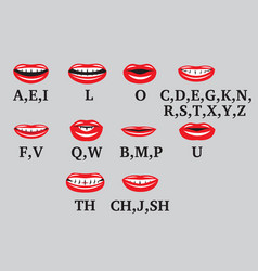 a set symbolic mouths with lips and teeth vector image
