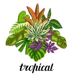 Background with stylized tropical plants vector